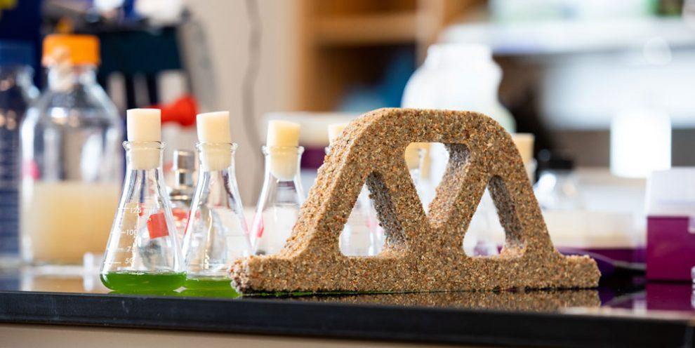 Lebender Beton Mithilfe von Cyanobakterien lässt sich eine umweltfreundliche Beton-Alternative herstellen. © College of Engineering and Applied Science at Colorado University Boulder