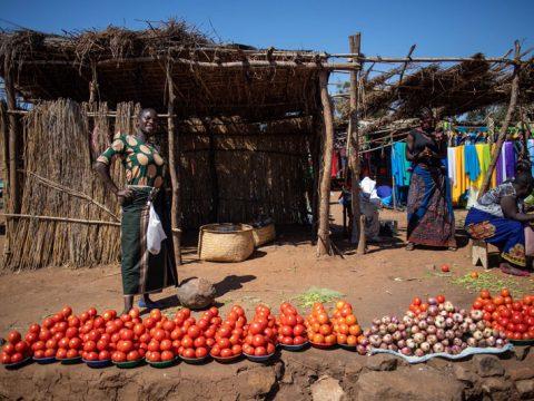 Beatrice betreibt ein Tomatengeschäft auf dem Markt. Mithilfe des Projekts konnte sie sich selbstständig machen.