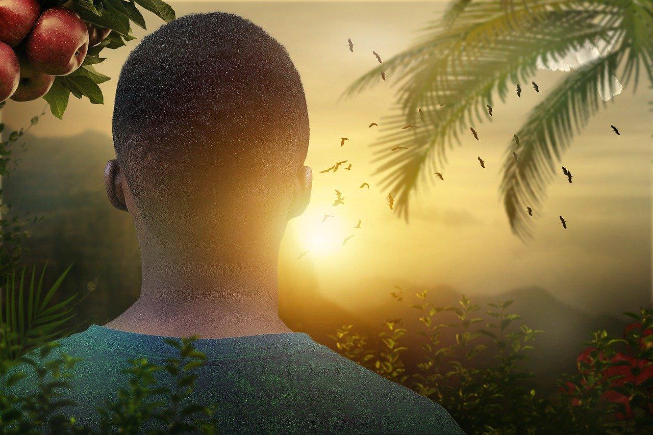 Afrikaner von hinten schaut gegen Sonne, links Apfelbaum mit Früchten, rechts Palme