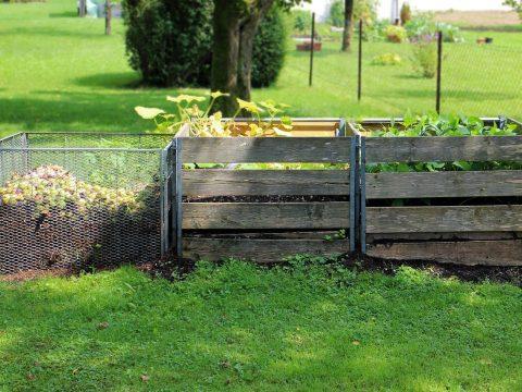 Komposthaufen in drei Stufen, zwei mit Nachtschattengewächsen bepflanzt
