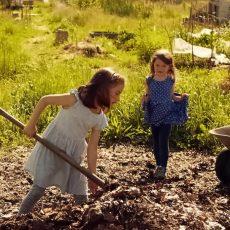 Gemüseackerdemie: Kinder bei der Gartenarbeit