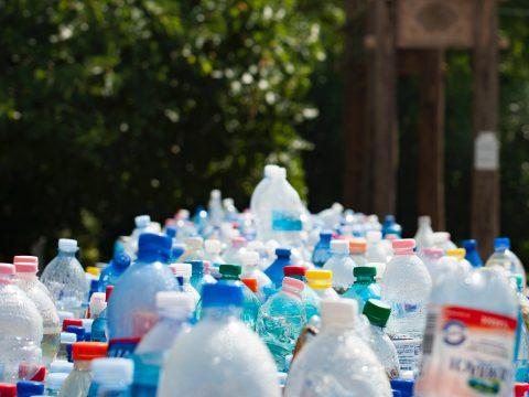 Unzählige Plastikflaschen vor Hauseingang mit Strauch