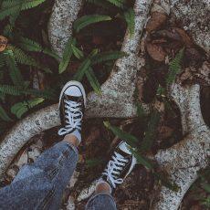Schuhe auf Wurzeln