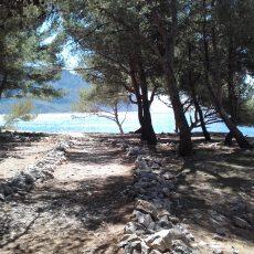 Mediterraner Wald
