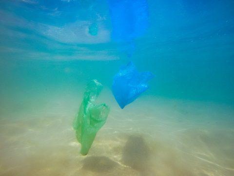 grüner und blauer Plastiksack im Meer
